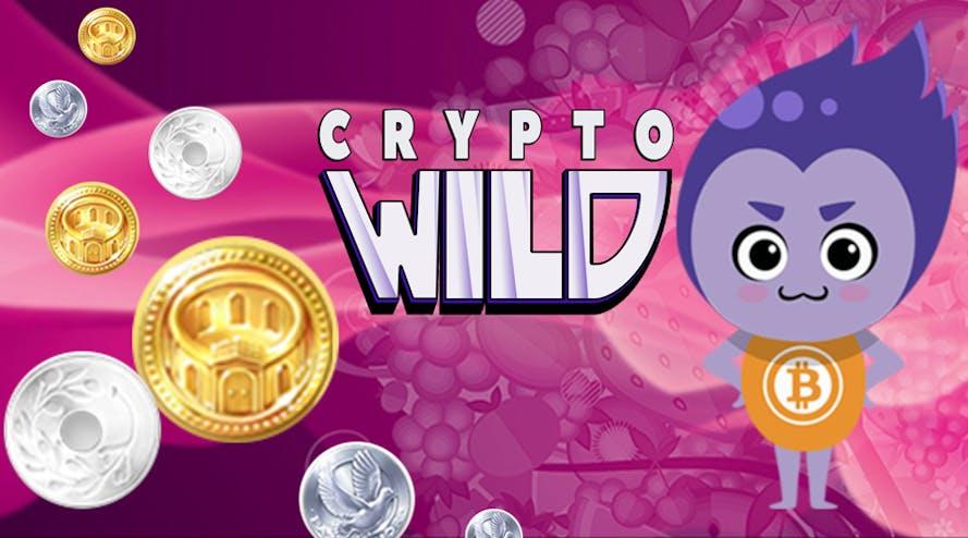 Crypto Wild casino has four different deposit bonuses