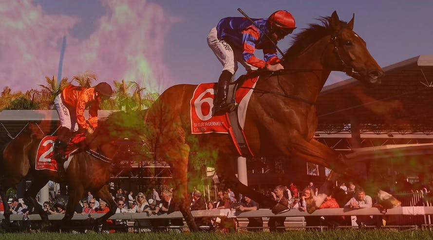 Adelaide horse racing to take place despite the extreme heatwave