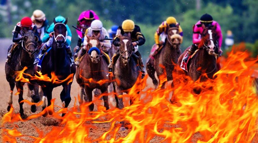 Bushfire fundraising: Special race day at Randwick