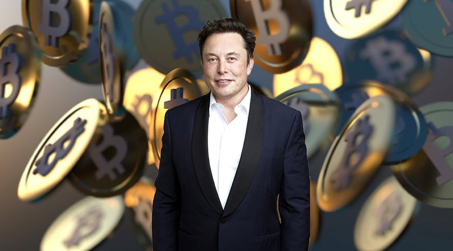 Elon Musk has been one of cryptocurrency's champions